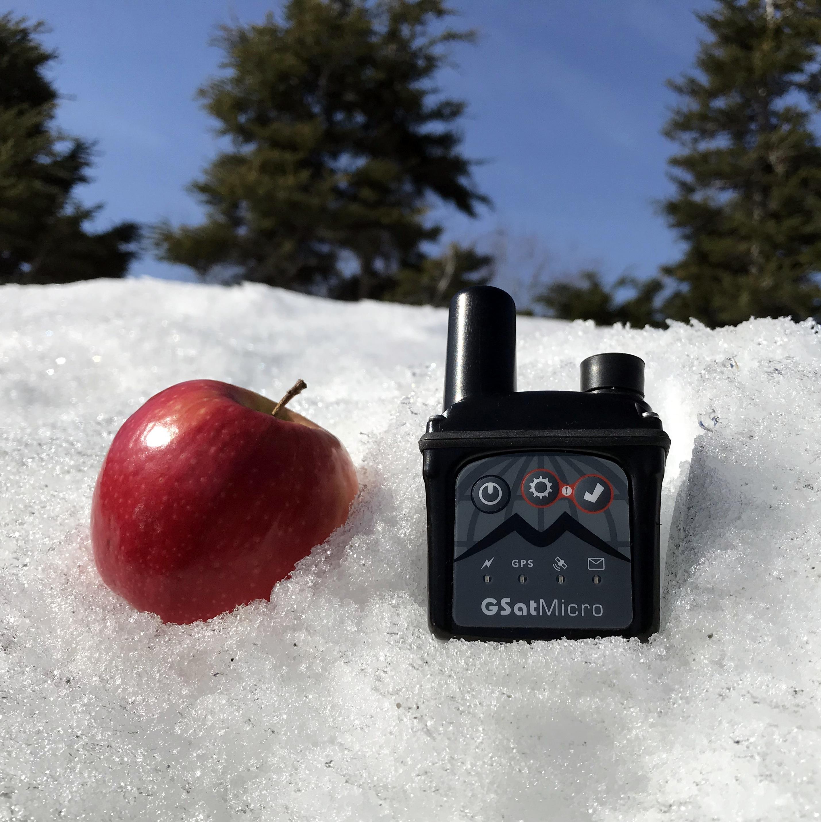 GSatMicro - Size comparison with small apple