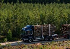 GSatTrack brings fleet management solutions to the forestry sector